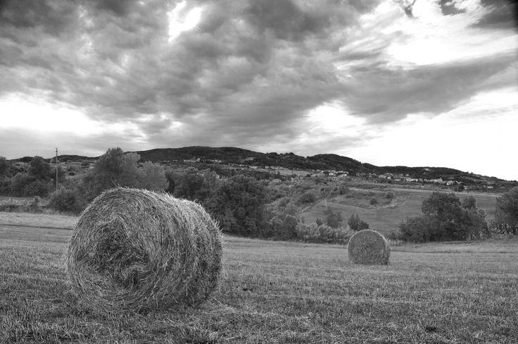 Photo Hay by Antonio Vannucci on 500px