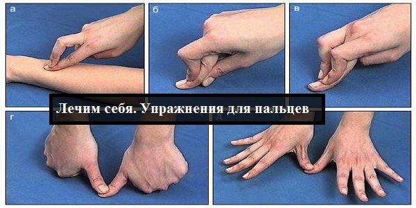 Наши пальцы могут лечить наше тело.  Гибкость и подвижность пальцев свидетельствует о состоянии вн...