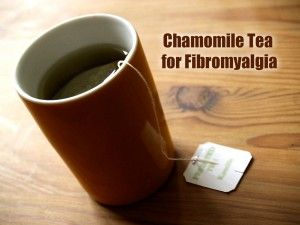 One natural way to fight a a flare up from a fibromyalgia is by drinking a calming cup of chamomile tea. Chamomile is an herb that people have used for centuries. It serves as a natural relaxation aid, and it also has anti-inflammatory benefits as well.  Chamomile is available in herbal tea bag form, or  [...]