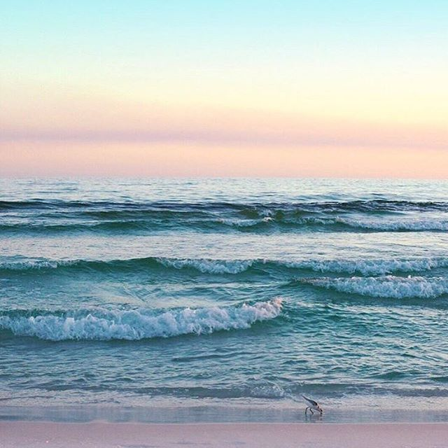 """""""If we all did the things we are capable of doing, we would literally astound ourselves."""" – Thomas Edison : Grayton Beach, Florida : @lindsayhavlicekbell"""