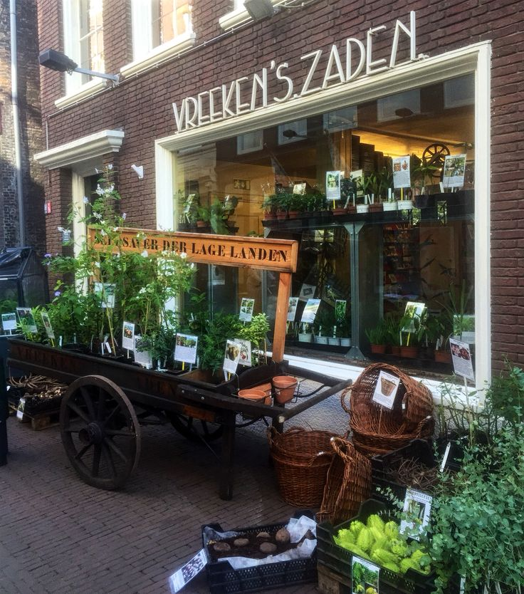 Toffe winkel met ontzettend veel zaden, planten en benodigdheden. In de voorstraat in Dordrecht