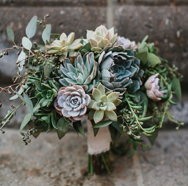 succulent variety with eucalyptis leaf and seed bouquet
