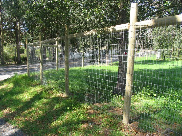 46 best images about wire fencing on pinterest fencing for Garden fence posts ideas