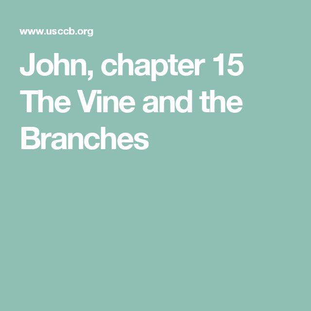 John, chapter 15  The Vine and the Branches
