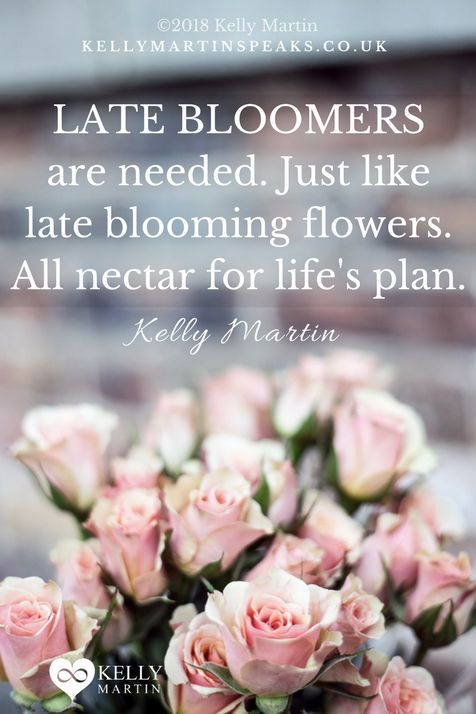 Take heart if you are blooming late in life, you are not the only one. It may appear that many are blooming early, but not everyone is showing you their true face, some are actually living an illusion. Late bloomers bring so much to life, to ideas, and to creation #quote #success