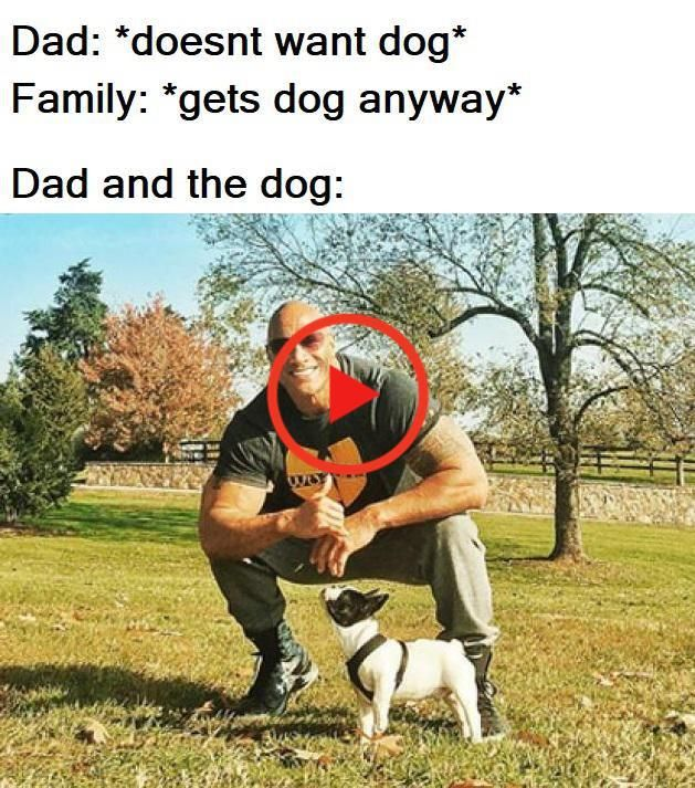 50 Wholesome Clean Memes That Bring The Feels Clean Memes Memes Bad Mood