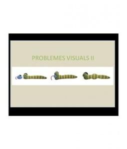 Problemes Visuals 2