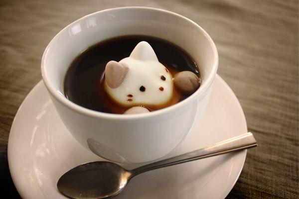 Cat Marshmallow - 猫2匹と猫の手マシュマロ4個(バニラ2個、チョコ2個)が入っています。ごくまれに真っ白いねこがいますので見つけた人はとってもラッキー♪飲み物に溶かす専用ではありませんがコーヒーや紅茶に浮かべ、溶かして…