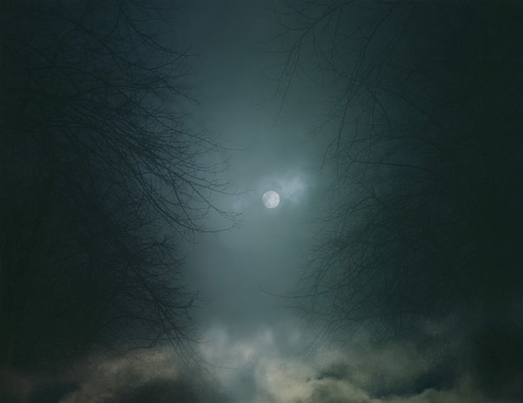 nicholas hughes from 'in darkness visible verse 1'