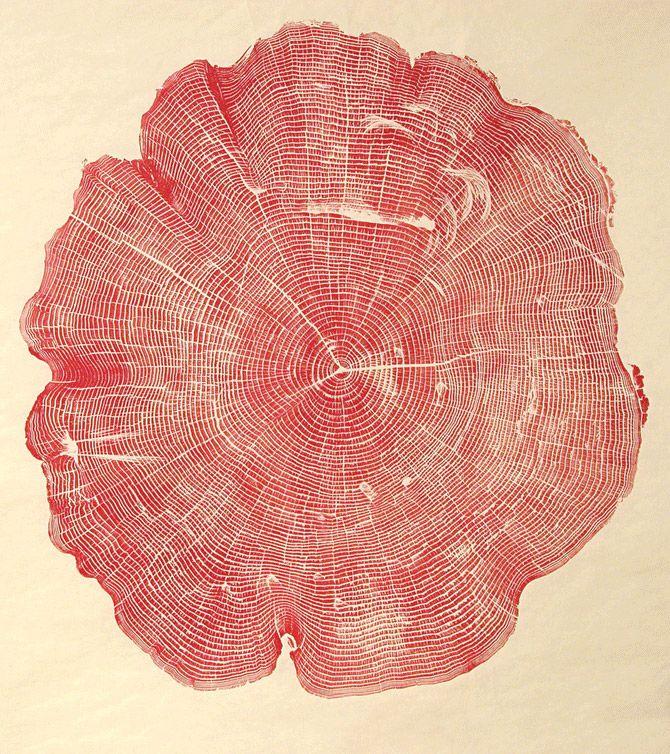WoodCut, 2012  La série WoodCut de l'artiste Bryan Nash Gill a été réalisée à partir de l'empreinte encrée de troncs d'arbres découpés. Ces impressions mettent en exergue la complexité des formes, presque mathématiques, la finesse des lignes et la texture du bois qui devient purement graphique. À la manière d'une empreinte digitale, chaque impression devient individuelle, faisant apparaître une personnalité, une sensibilité à fleur de peau…
