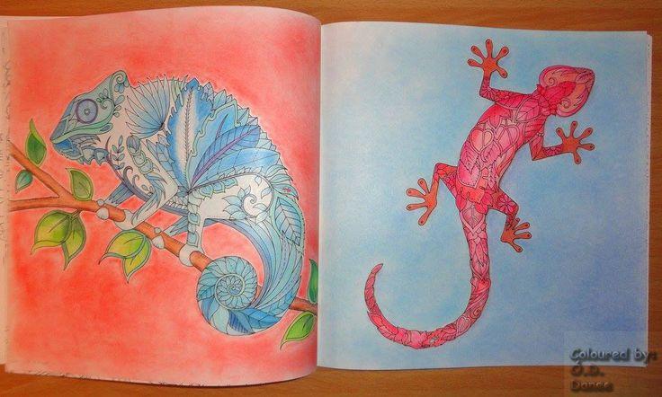 Mágikus Dzsungel - Gyíkok Magical Jungle - Lizards