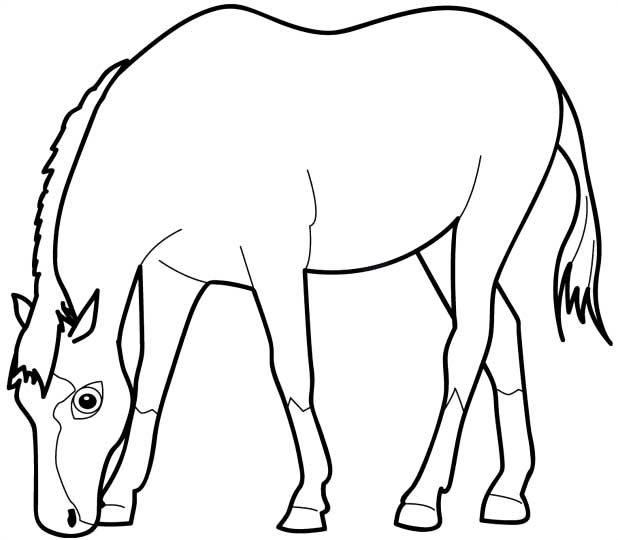 Horse Eating Grass Coloring Page Desenho De Cavalo Comendo Grama