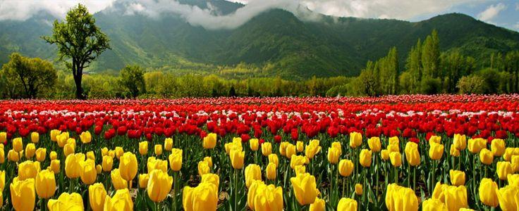 Kashmir – The Paradise on Earth.