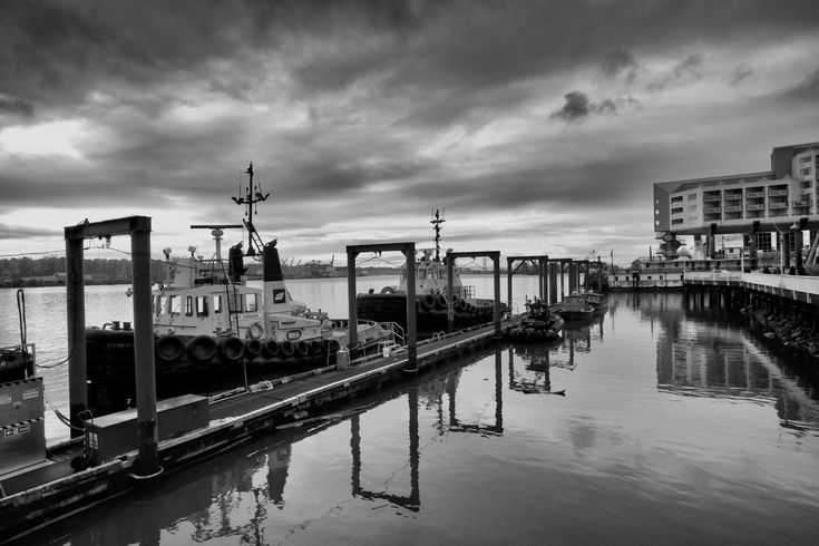 Tug boats moored in the Fraser River at New Westminster, B.C. Click image to enlarge.