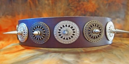 Custom Leather Dog Collar with Spikes