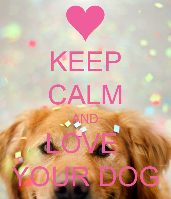 KEEP CALM AND LOVE  YOUR DOG