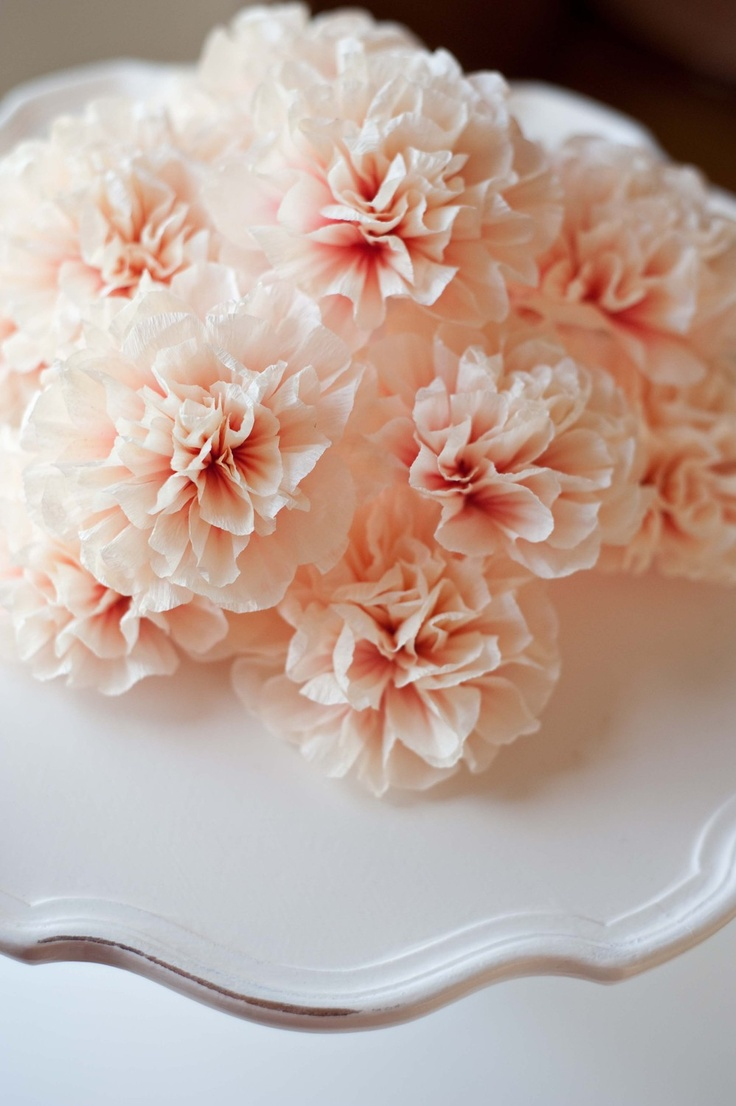 72 best for the love of crepe paper images on pinterest for Painted paper flowers