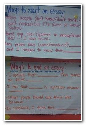 what is a expository essay example   expository essay thesis statement examples  examples of thesis statement
