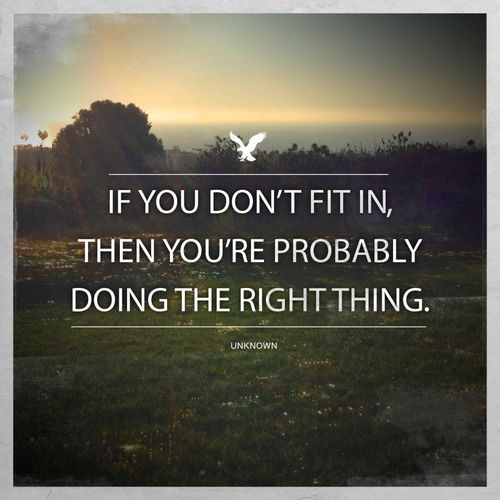 if you don't fit in...I have been doing the right thing for years!