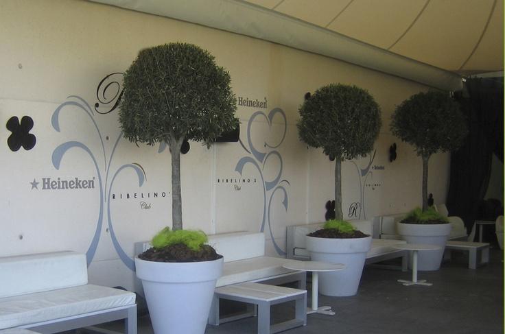 Diseño de interiores para la empresa Heineken, Customizaciones en discotecas de España y locales de noche