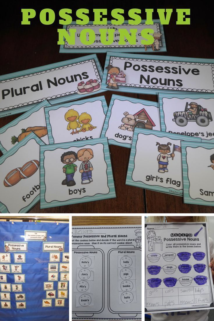 Letter B Preschool Worksheets Pdf Best  Possessive Nouns Worksheets Ideas Only On Pinterest  Elements Of Nonfiction Worksheet with Worksheets On Percentage Pdf Possessive Nouns Can Be Tricky To Teach At Times This Unit Is Designe To  Give Coriolis Effect Worksheet Excel