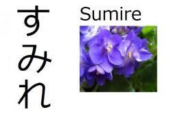 Sumire (violeta) Significado: Violeta (flor) Lectura: Sumire Nombre de chica El nombre 'Sumire' también se puede escribir con el kanji 菫, pero es menos común.