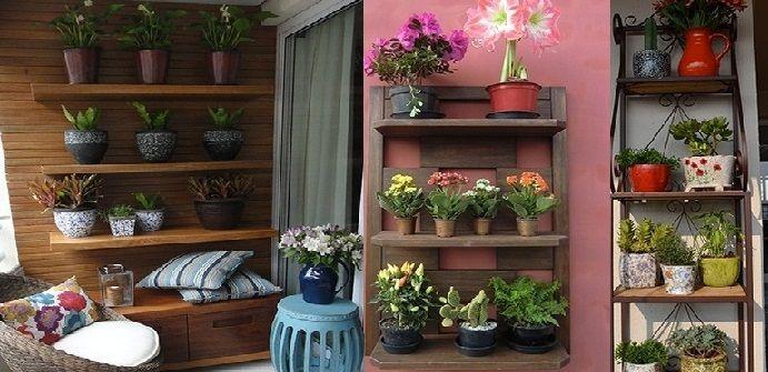 Jardim de estante como fazer jardim na estante dicas - Estantes para plantas ...