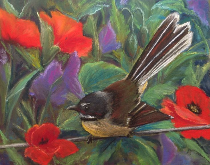 "Pastel Painting by JackieMac ""A Fantail in my Garden"""