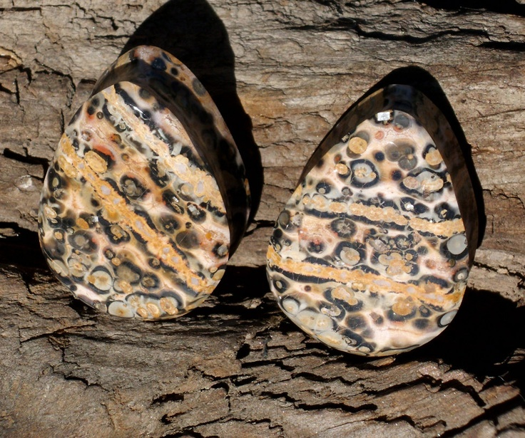 1 inch leopard skin jasper teardrop plugs by ProBodyMod on Etsy, $35.00Worth Reading, Jasper Teardrop, Skin Jasper, Book Worth, Leopards Skin, Inch Leopards, Teardrop Plugs