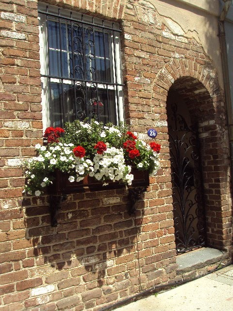 Antique ART Garden: SPRING Window BOXES in CHARLESTON, South Carolina