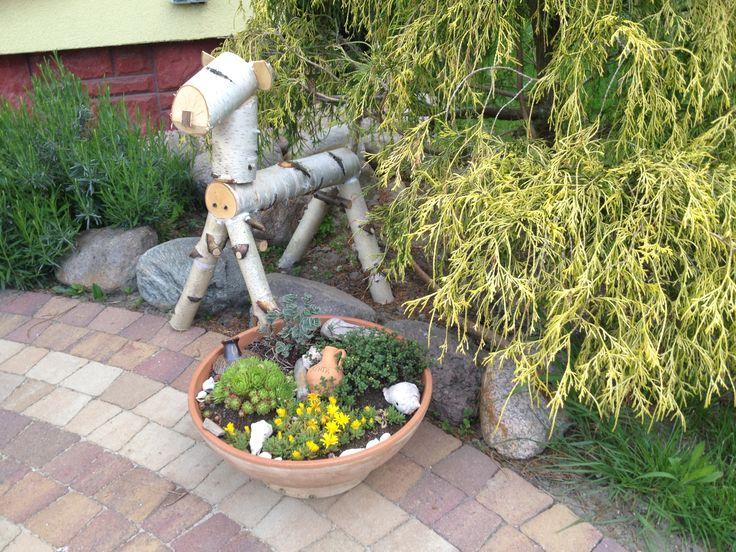 Birch lamb and suculent mini garden