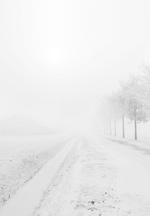 ≡ Winter White