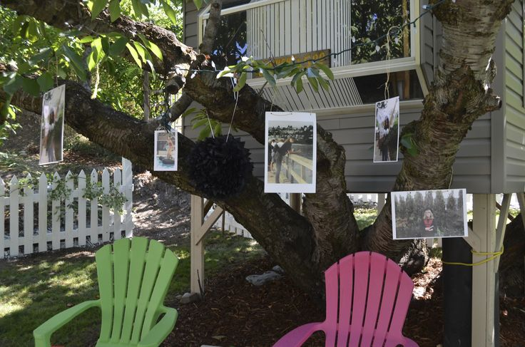 PIctures of the Bride and Groom in an old Cherry Tree with treehouse