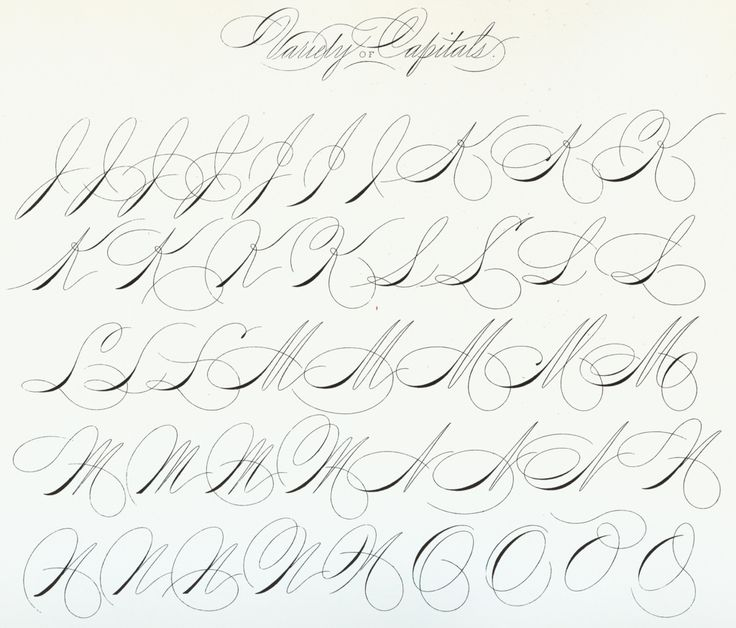 The New Spencerian Compendium of Penmanship