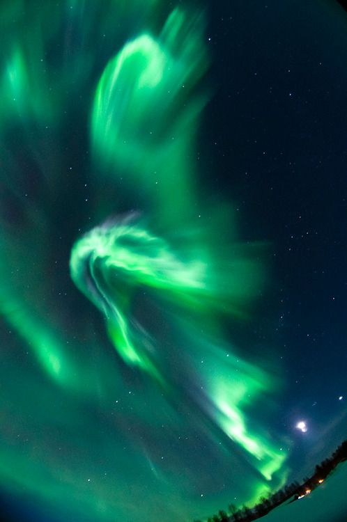 81 best images about aurora boreal on pinterest sky for Outer space travel