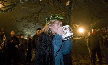 The new wassail queen drinks a draught of cider. A piece of toast dipped in cider, well known as the favourite food of good spirits, is up the tree in the background.
