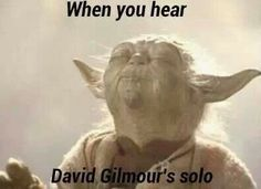 When it comes to that everything stops and listens the relaxing tone of every Gilmour's solo