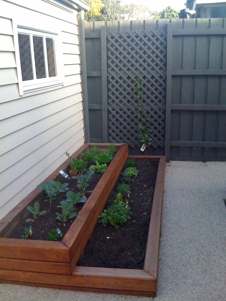 Vege patch planter boxes