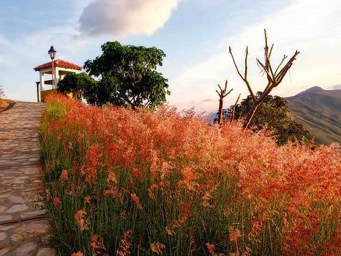 Santander region, Colombia