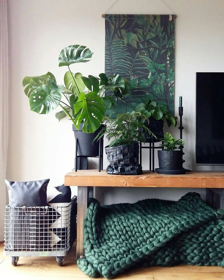 See this Instagram photo by @urbanjungleblog