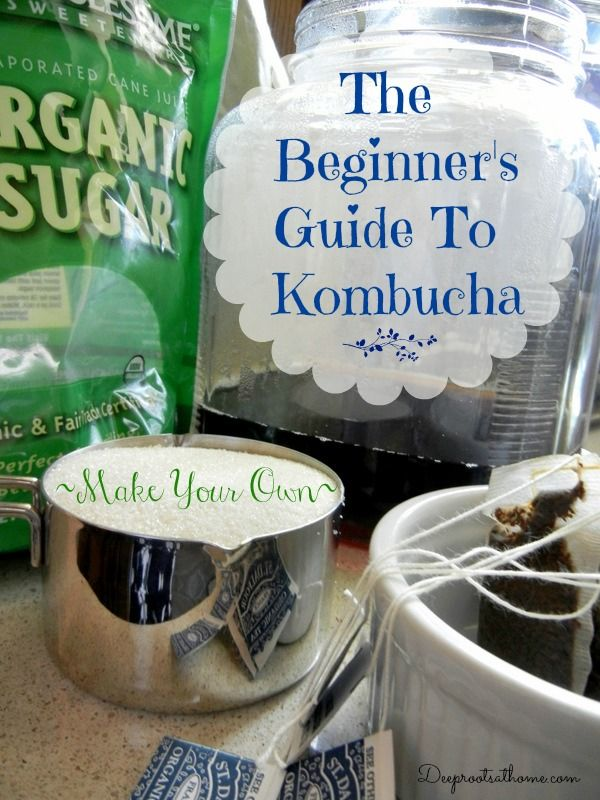 Beginner's Guide To Kombucha ~Make Your Own | Deep Roots at Home