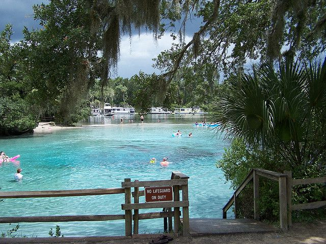 Silver Glen Springs (Marion County, FL) by systemslibrarian, via Flickr