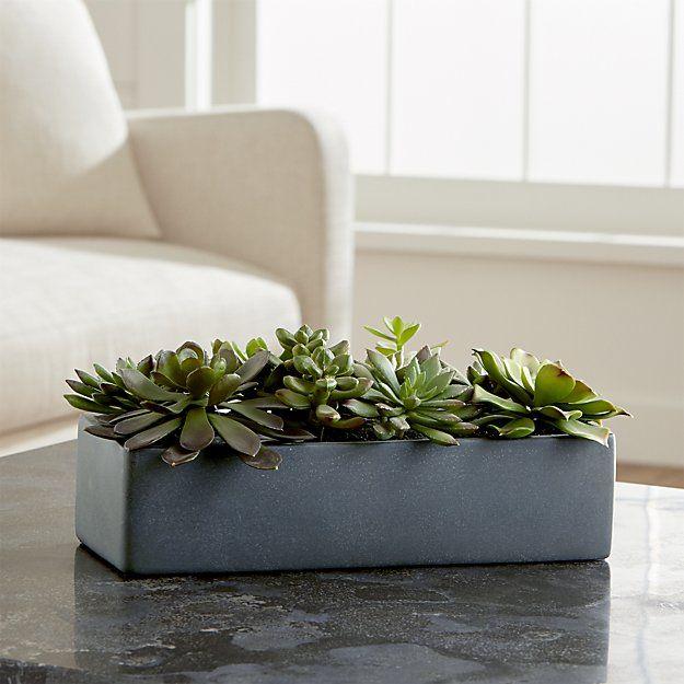 """Artificial Succulents in a Pot / Crate and Barrel / W13.5""""x D7"""" x H6"""" / Terra Cotta pot / $49.95"""