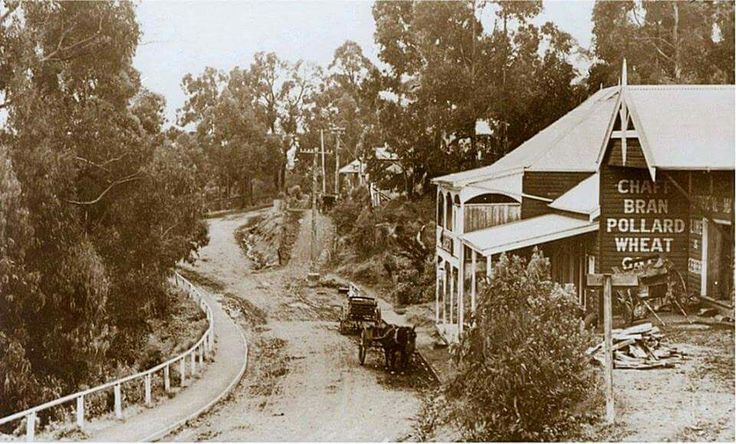 Belgrave in the Dandenong region of Victoria in c.a.1900.