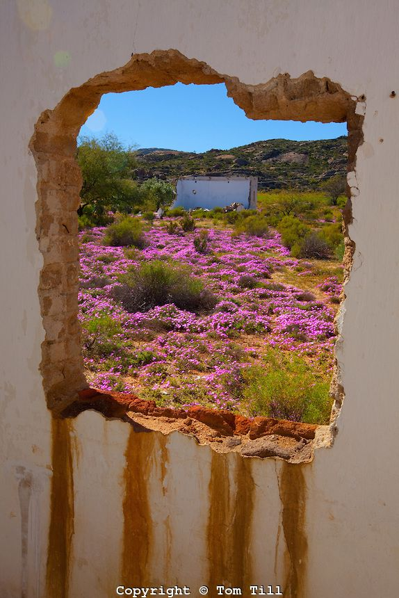 Namaqualand, South Africa. BelAfrique your personal travel planner - www.BelAfrique.com
