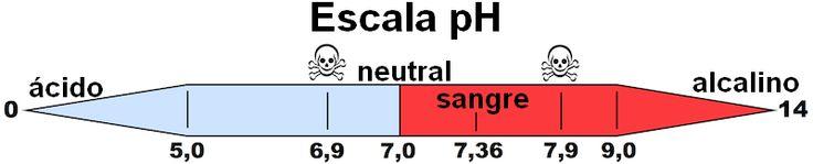 Escala PH Nueva Medicina Germanica Articulos Nicolas Barro NMG Hamer
