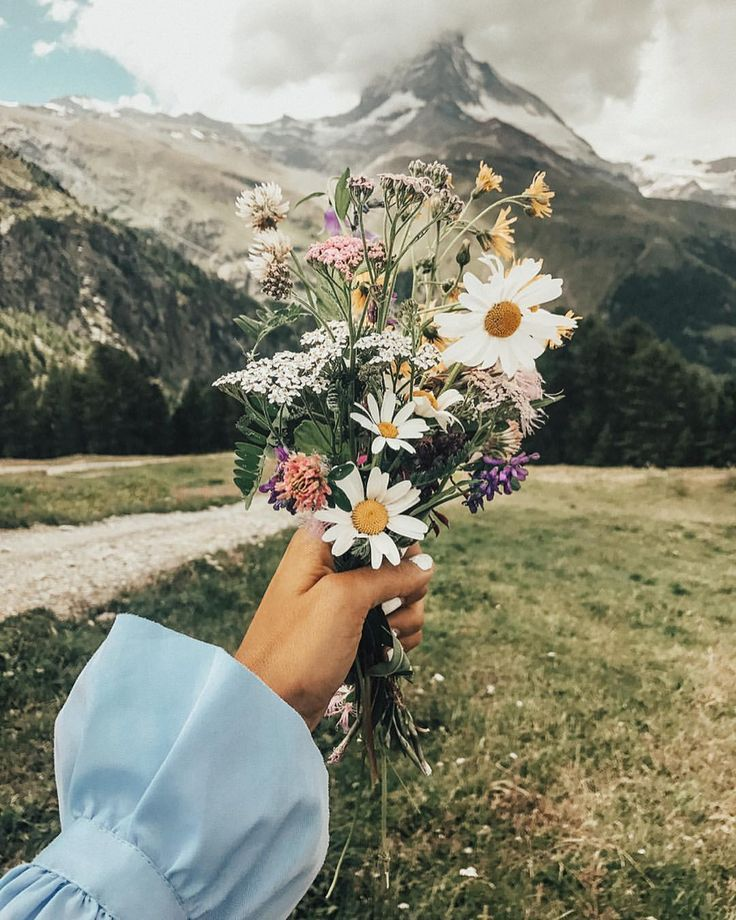 Flowers and a landscape which looks unreal!