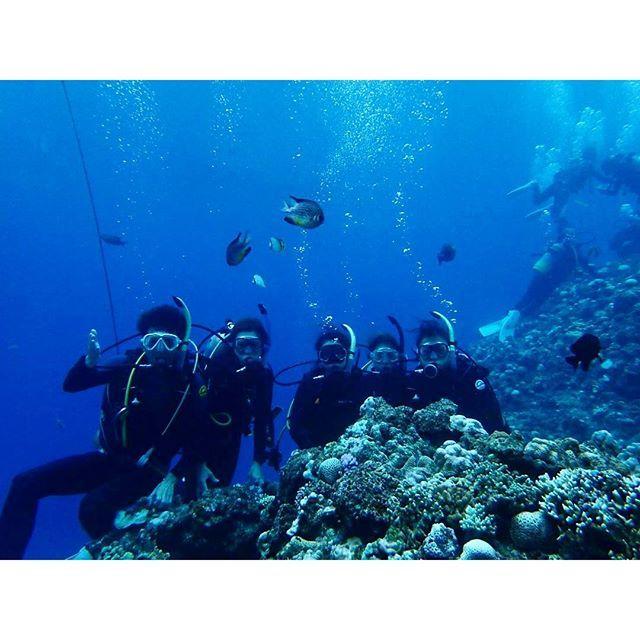 【ailovege】さんのInstagramをピンしています。 《* 慶良間行けなかったけど 青の洞窟にファンダイビング💙💙 ・ ・ ダイビング三昧の2日間💪 次はローフードとダイビング三昧の日々にしたい。 ・ #diving#okinawa#japanesesea#naturallife#health#bluesea#divingtrip#trip#ダイビング#ファンダイビング#沖縄#青の洞窟#恩納村#リゾート#海#夏休み#シュノーケリング#青い海#夏休み#神秘的#自然#リフレッシュ#マリンスポーツ》