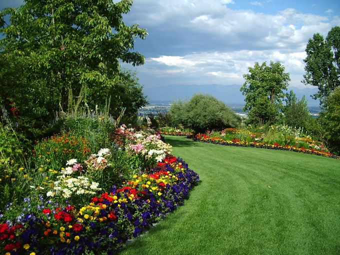 Large-scale beds with wide mowed path