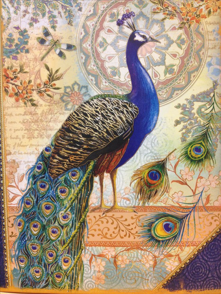 102 Best Images About Peacock Room Ideas On Pinterest